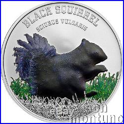 BLACK SQUIRREL Reverse Proof Silver Coin in BOX + COA 2013 Cook Islands $5